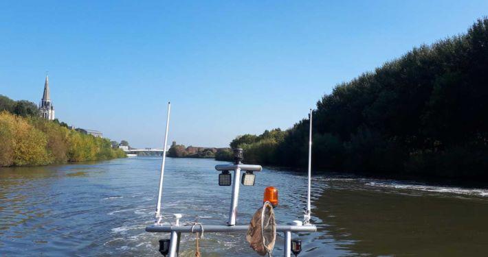 Afvissen, Onderzoek, Visstandbeheer | Kooistra Visserij