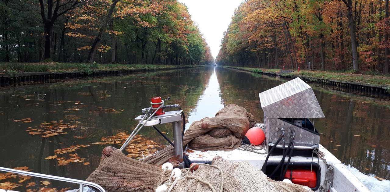 Afvissen, verwijderen van vis | Kooistra Visserij: afvissen, onderzoek en beheer
